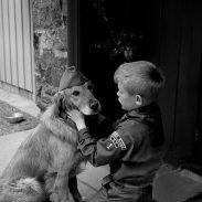 Buen Ciudadano Canino: Conociendo tu Mascota